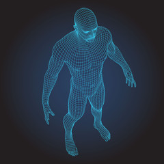 3D wire frame human body full face