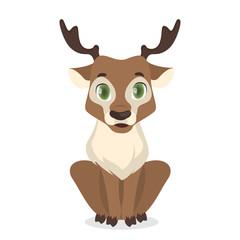 Isolated baby deer.