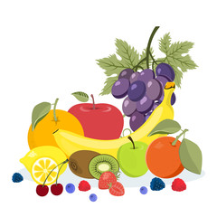 Colorful fruits illustration.