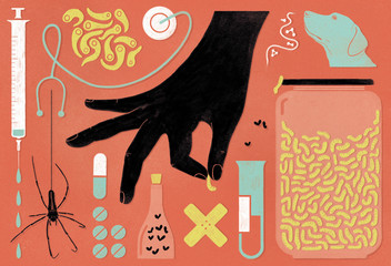 Animals healthcare