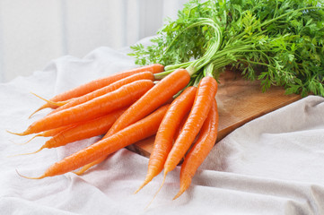 Bunch of fresh carrot