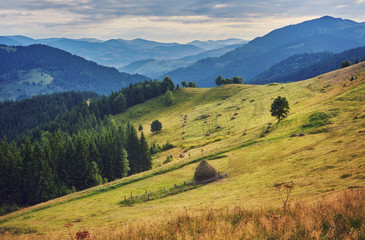 mountainous landscape with forested hills. beautiful summer scenery on a cloudy day