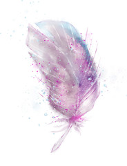 pink feather, watercolor