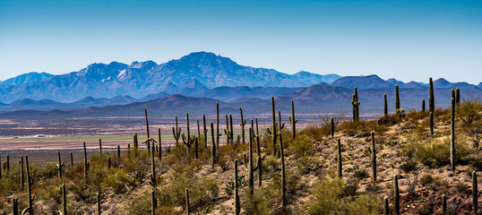 Arizona Desert Mountains