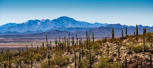 Arizona Desert Mountains Fotoväggar