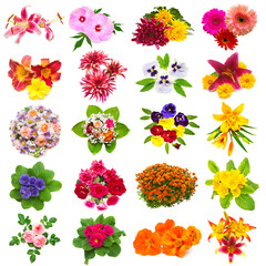 Flowers collection of roses, lilies, chamomiles, hibiscus, chrysanthemum, yarrow, gerbera and others isolated on white background. St. Valentine's Day. Easter. Flat lay, top view