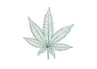 marijuana leaf vector illustration