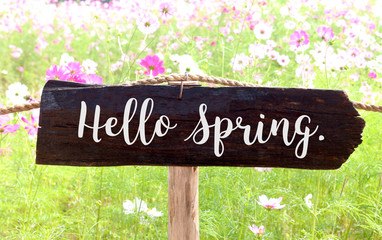 "Wooden sign ""Hello Spring""on blurred Cosmos flowers background with vintage filter"
