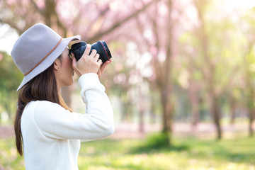 Young woman taking photo of blooming cherry blossom in park, Spring morning background