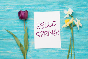 hello spring, text and two spring flowers over turquoise wooden planks