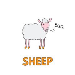 Cartoon Sheep Flashcard for Children
