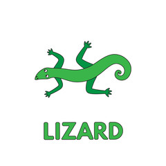 Cartoon Lizard Flashcard for Children