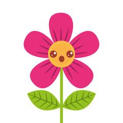 beautiful flower surprise kawaii cartoon