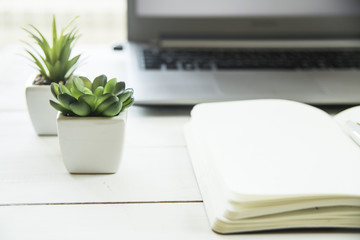 Two small pots with succulents at the computer on the desktop. Next to a white open notepad. A minimalistic stylish workplace