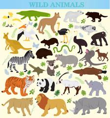 Set of wild animals on a white background