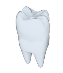 Tooth. 3d illustration