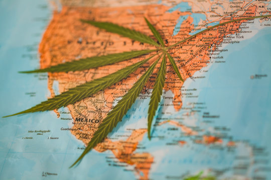 cannabis leaf on the world map