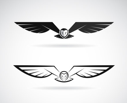 Vector of an owl design on a white background. Bird. Animals.