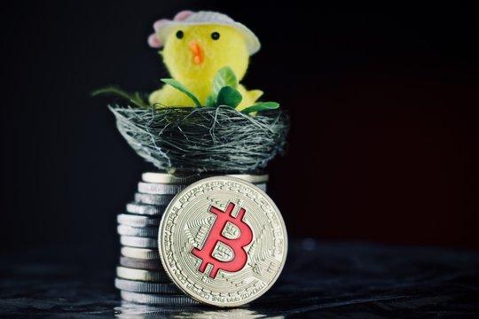 Bitcoin easter concept