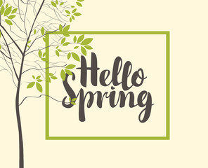 Vector banner with calligraphic inscription Hello Spring in frame and green spring tree in the park