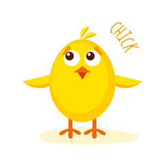 Chick vector illustration