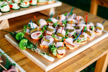 Delicious catering banquet buffet table decorated in rustic style in the garden. Different snacks, sandwiches with ham, cucumber gherkins and greenery on a wooden plate. Outdoor.