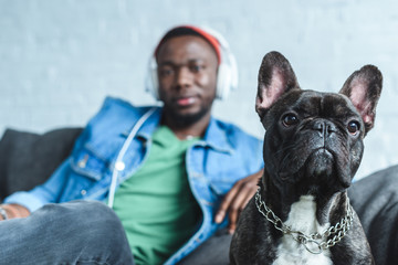 French bulldog by handsome african american man in headphones