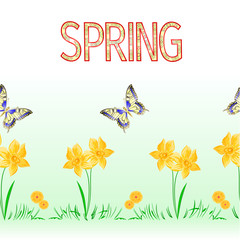 Spring border seamless background butterfly and daffodil vector Illustration for use in interior design, artwork, dishes, clothing, packaging, greeting cards