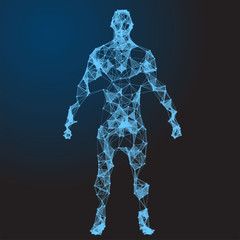 Low poly wireframe Human Body. Abstract Illustration
