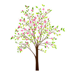 Spring tree with flowers isolated on white background vector