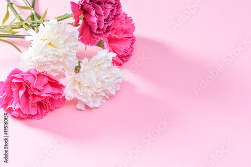 May Mother's Day Carnation Bunch of Flowers Bouquet Top View, Blank for Text,   Pink