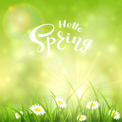 Green nature sunny background and text Hello Spring