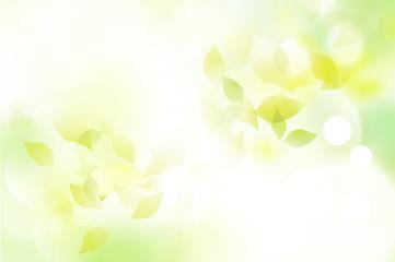 新緑 ふわ緑 三