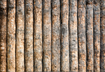 Wall Mural - Log background