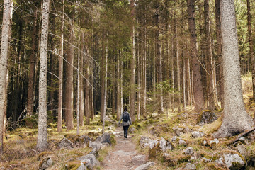 female walking in the wood, sportive woman hiking in the forest