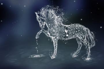 Fototapeta The Water Horse