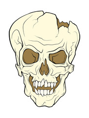 The skull of a grinning vampire. Vector color illustration of a tattoo style isolated on a white background.