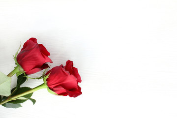 fragrant flowers to an event/ pair of gentle red roses on a light wooden surface