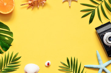 Tropical Background. Palm Trees Branches with camera and seashell on yellow background. Travel. Copy space.