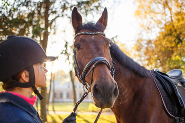 Close up portrait of bay horse with rider girl at sunny park