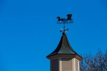 Weather Vane Amish Buggy