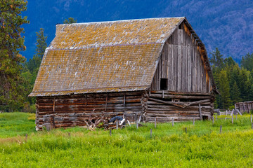 Old gambrel roofed log barn in a field in the Flathead Valley, Montana