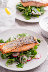 Roasted salmon fillets with spinach and radish salad.