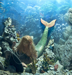 mermaid with mirror