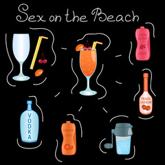 Sex on the Beach Cocktail ingredients isolated vector colorful illustration