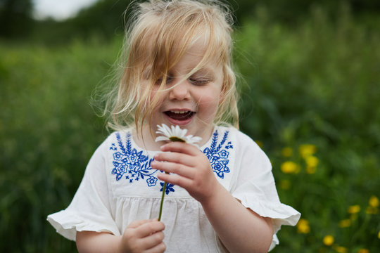 Toddler picking flowers in a park