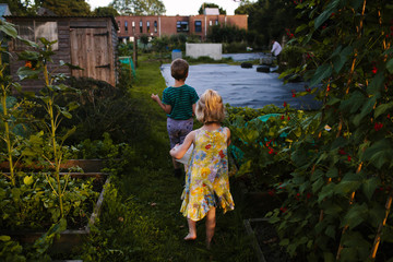 Children helping in an urban kitchen garden at dusk.