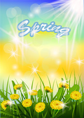 Vector illustration  Springtime on background with spring flowers. Dandelions.
