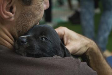 Homem abraçando filhote de cachorro