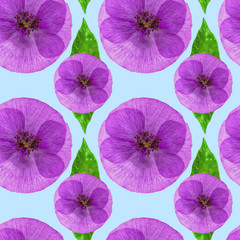 Poppy. Seamless pattern texture of flowers. Floral background, photo collage